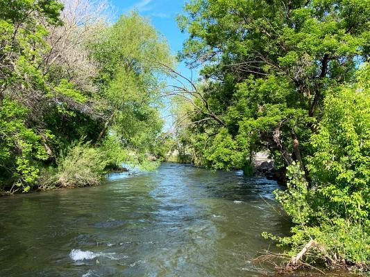 Provo-River-bend