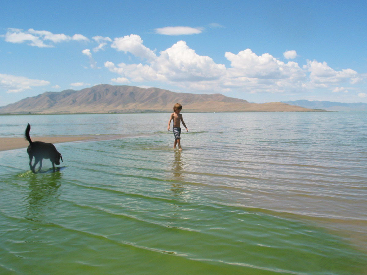 Utah Lake algae bloom