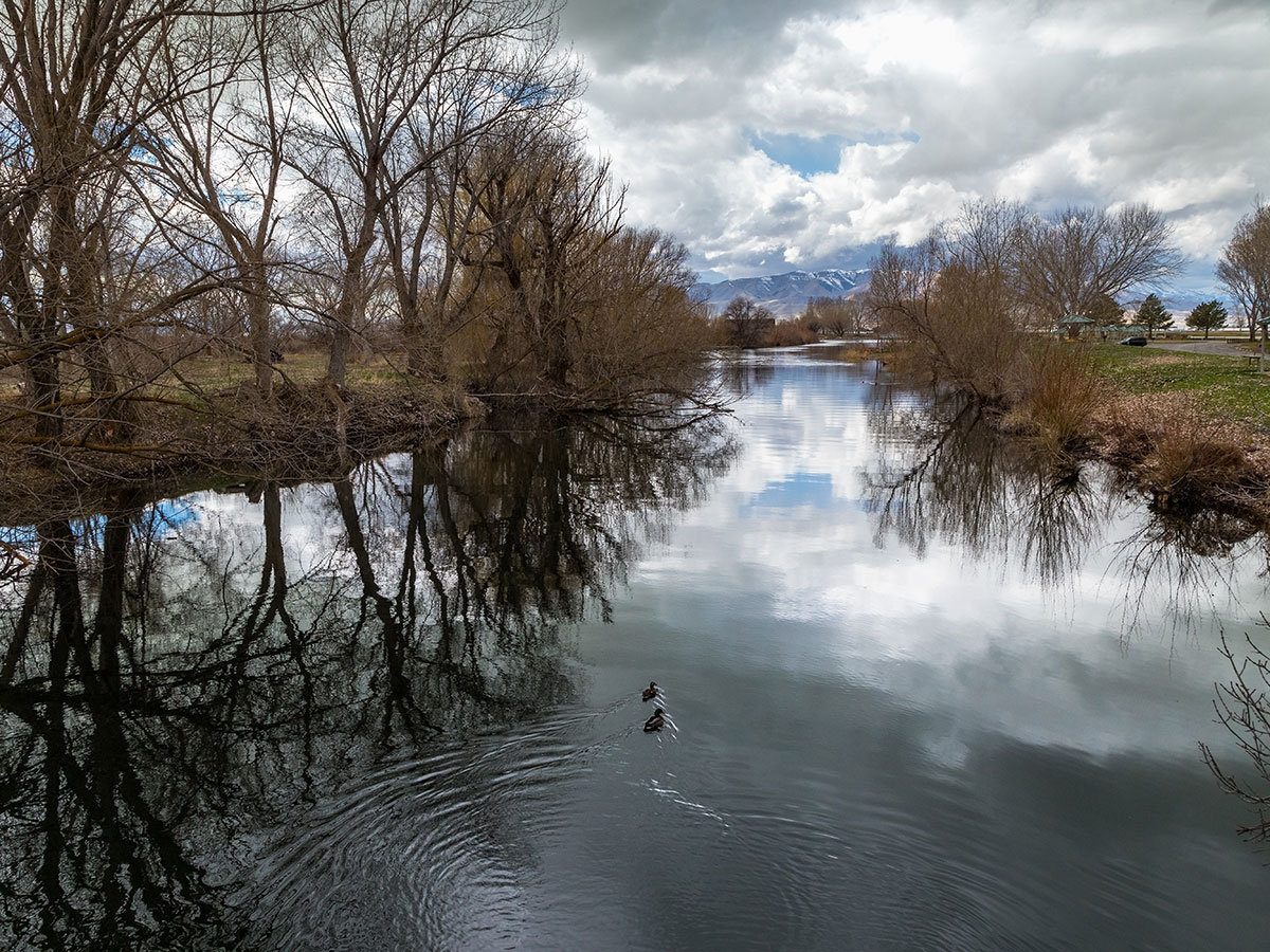 Key Fact: Provo River managers become accountable for June sucker